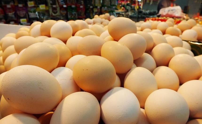 鸡蛋期货:鸡蛋迎来消费旺季价格存在上涨空间