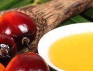 供不应求格局仍将持续 棕榈油有望再创新高(一)