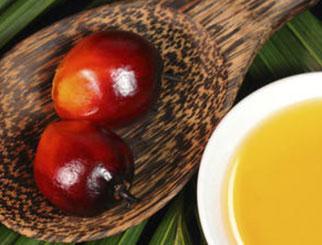 大商所引入境外交易者参与棕榈油期货交易