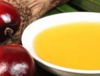 《农产品期货》:来自热带的百变油脂——棕榈油及其提取工艺介绍