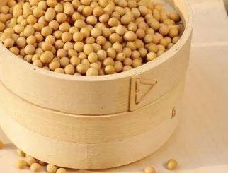 生猪出栏加速豆粕需求下滑