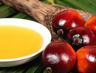 """棕榈油期货国际化将提升""""中国价格""""影响力"""