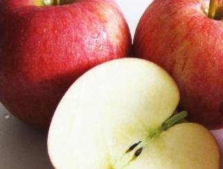 苹果期货跌停创历史新低 后市将如何演绎?