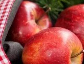 苹果期货上市3周年 期货助力传统苹果产业转型升级(三)