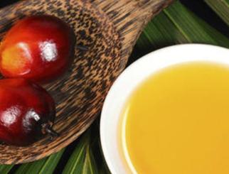 棕榈油期货交易指南:棕榈油概述及价格影响因素