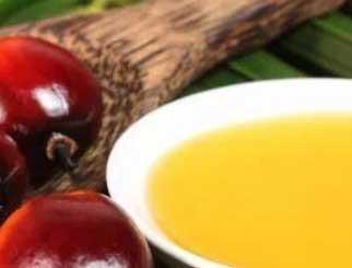 棕榈油期货基础知识科普