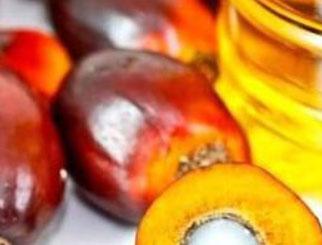 供不应求格局仍将持续 棕榈油有望再创新高(二)